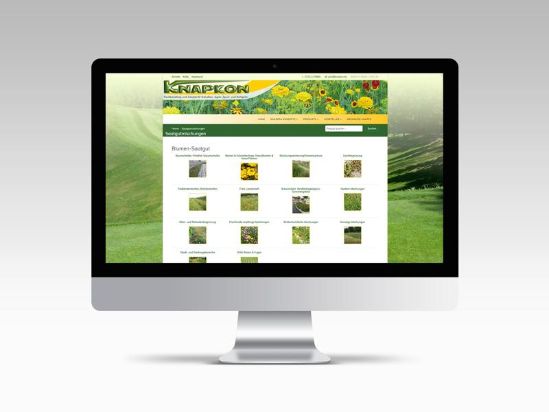 Website 2 38 O
